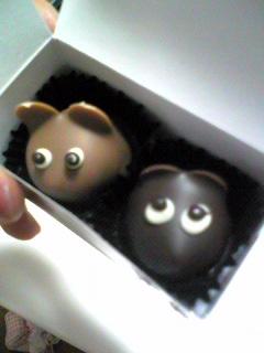 チョコくん